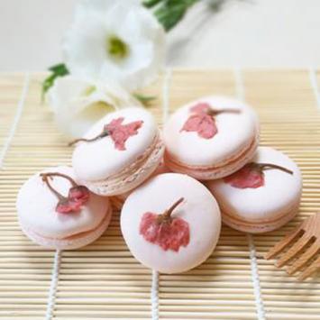 Tổng quan về ẩm thực Nhật Bản – tinh tế và hài hòa